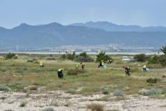 Spiagge pulite Cagliari
